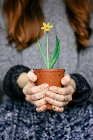 flower-1-4