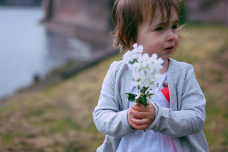 flower-1-6
